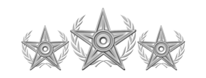 Silver Package Emblem